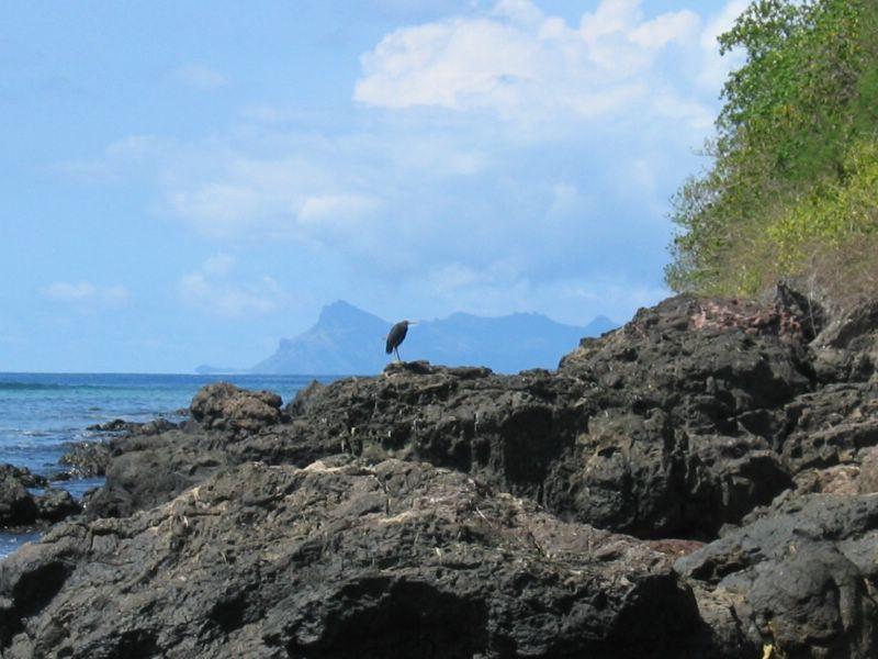 ���� Fiji img_4694.jpg