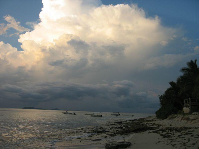 ���� Fiji img_4722.jpg